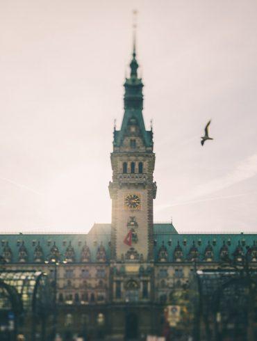 Hamburger Rathaus bei Gegenlicht