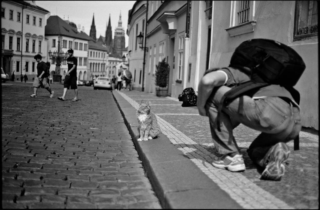 """Making of """"Katzenbild in Prag"""" von Patrick H."""