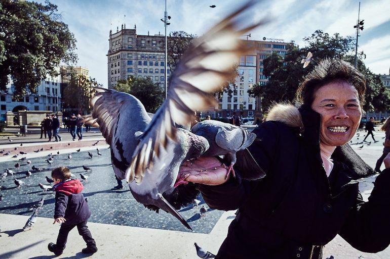 Taubenfüttern in Barcelona