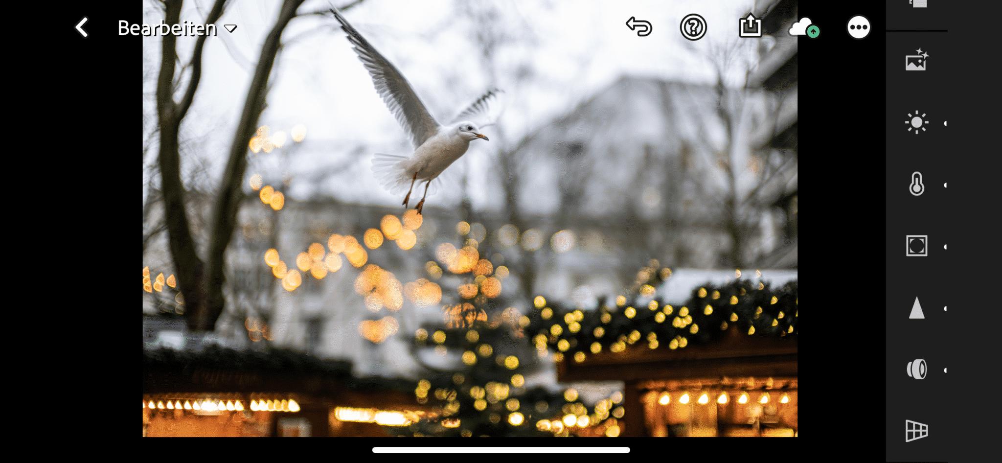 Von der Leica SL2 via Fotos App auf das iPhone übertragen und in der Adobe Lightroom App bearbeitet.