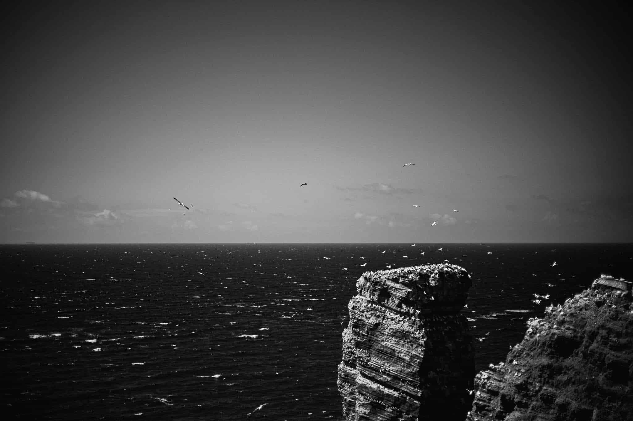 Leica Monochrom auf Helgoland